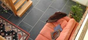 5 grafite per pavimenti interni salotto