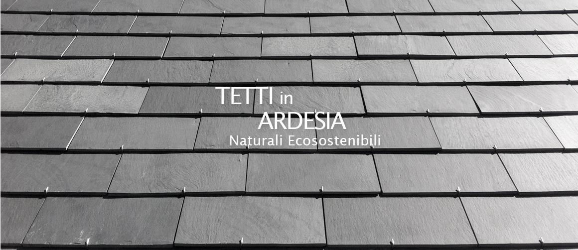 Tetti_in Ardesia