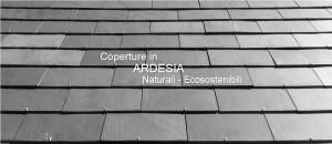 Coperture in Ardesia naturali ecosostenibili