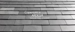 Coperture in Ardesia Naturali ed Ecosostenibili